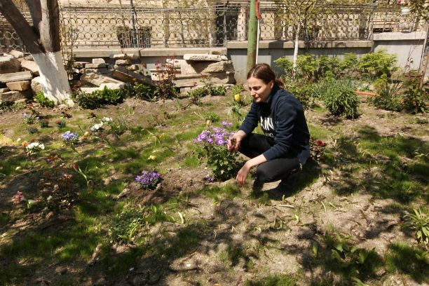 Voluntariat pentru mediu